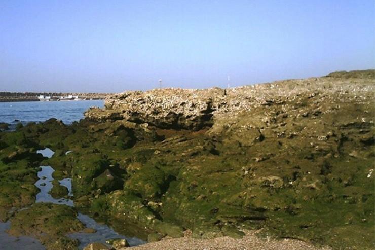 روستای رمین