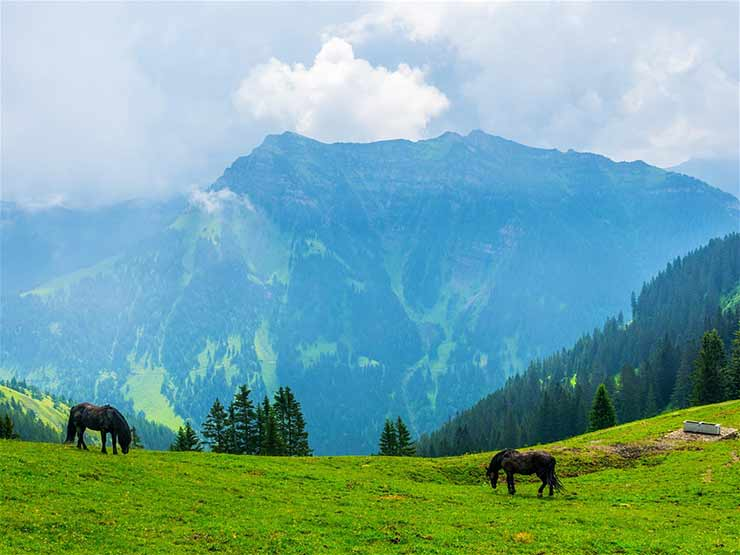 High-altitude hikes in Liechtenstein